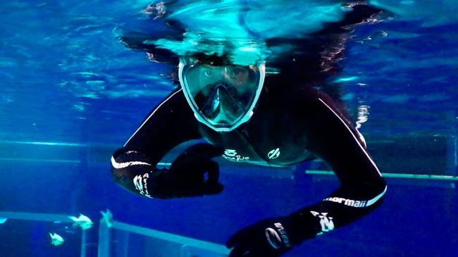 Mergulho no AquaRio: uma experiência inesquecível